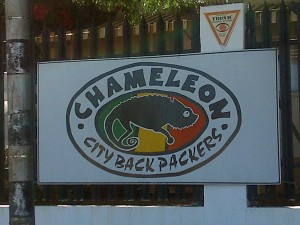 Chameleon Backpackers 2
